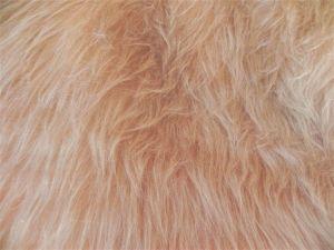 Umělá kožešina metráž, béžová, vlas 45 mm, š. 149cm