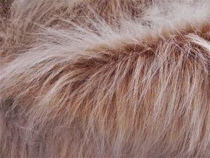 Umělá kožešina metráž, béžová, vlas 90 mm, š. 145cm