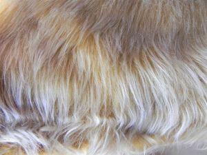 Umělá kožešina, metráž, zlatavě hnědá, 45mm vlas, š. 147cm